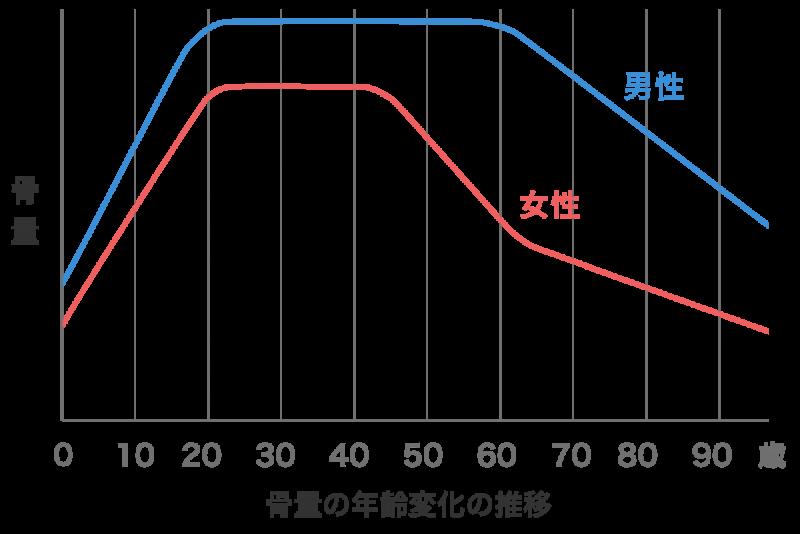 骨量の年齢変化推移グラフ