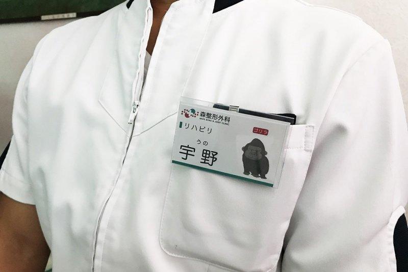類人猿分類診断の名札